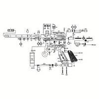 Kingman Spyder SE Gun Diagram