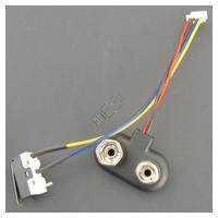 Battery and Micro Switch Harness [PM8] R30510020