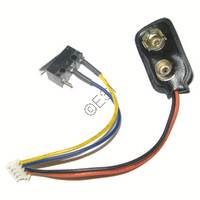 Battery and Micro Switch Harness [DMC] R30510016